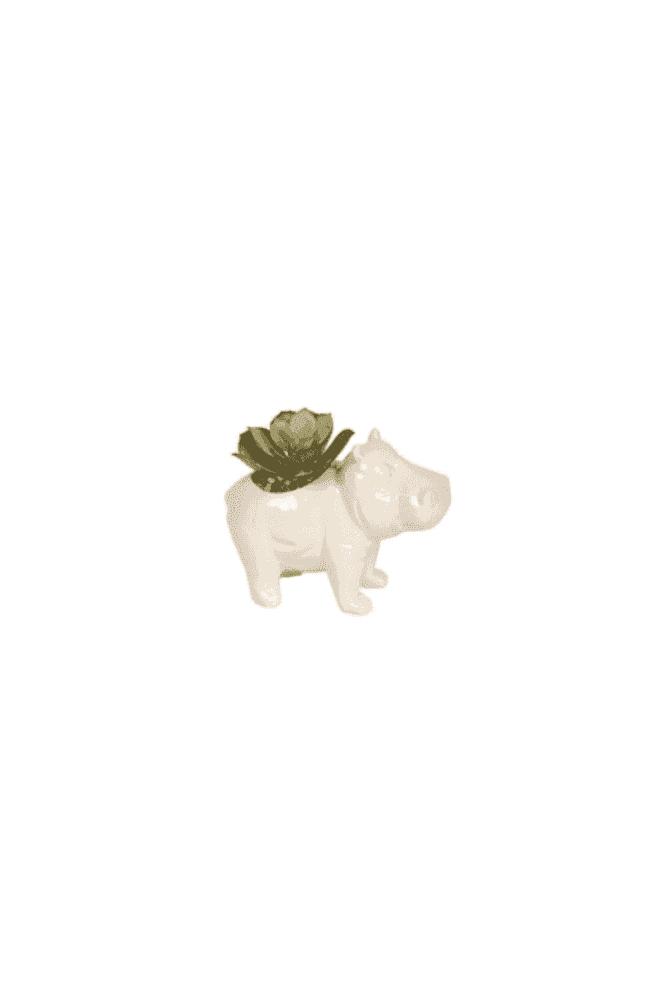 Artificial Succulent in Hippo Pot