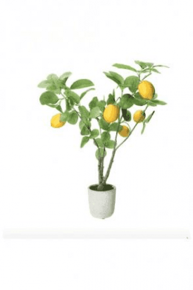 Faux Potted Plant 50cm - Lemon Tree