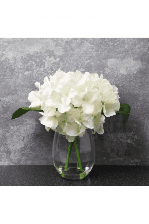 The Flower Patch Hydrangea White in Glass Vase 20cm